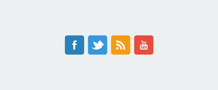 Flat Social Network Icons by Jenya Zaycev